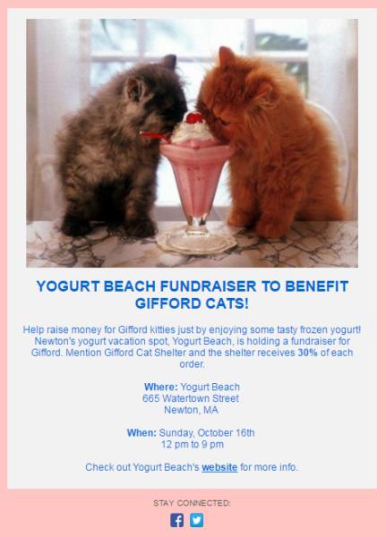 Nonprofit Fundraiser example