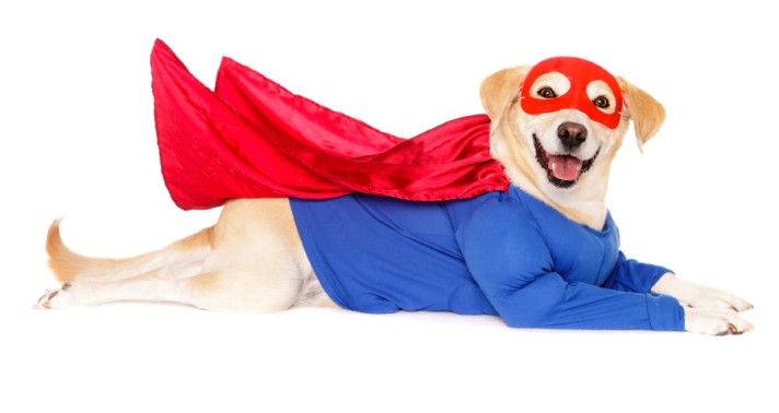Background Images: Email Marketing's Unsung Heroes