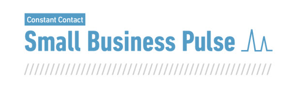 Small Business Pulse 2012 [INFOGRAPHIC]