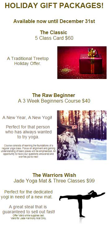 email campaign holiday gift packages
