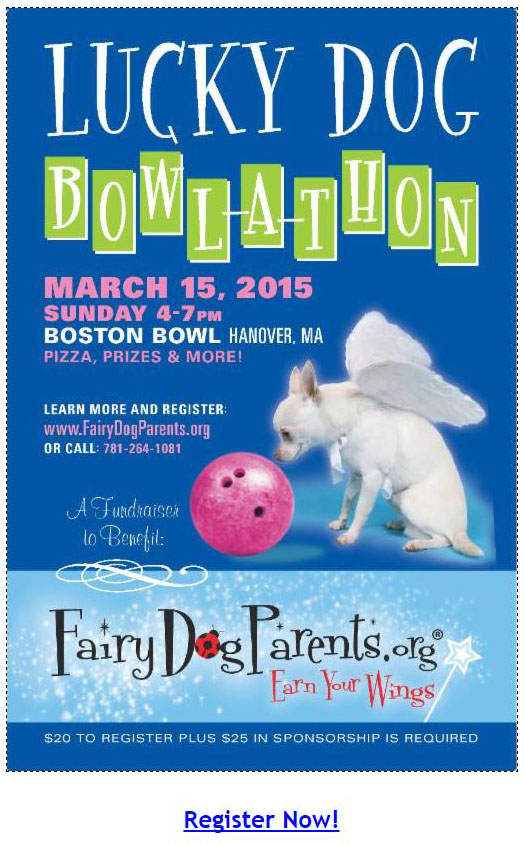 Event Invitation - Fairy DogParents