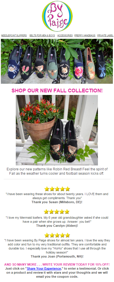 26 fall product review email example