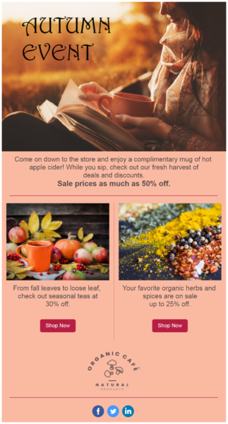 autumn sales event email campaign example