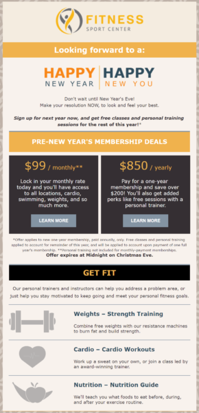 pre-new year's sale example email