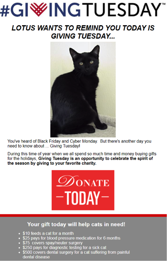 Giving Tuesday email donate button