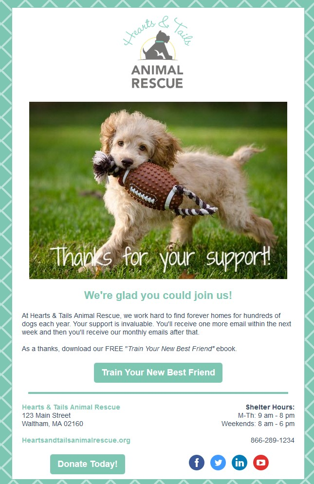 Hearts & Tails Welcome Series Email