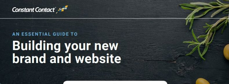 An Essential Guide to Building Your New Brand and Website