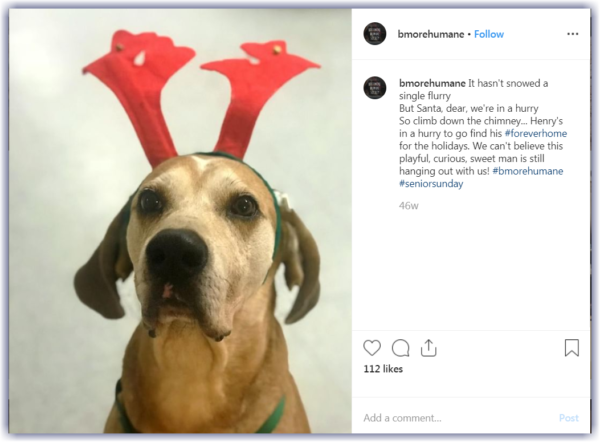 example holiday social media post