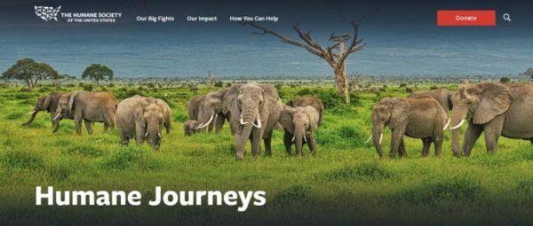 Humane Journeys