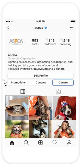 Instagram Fundraising using donate button