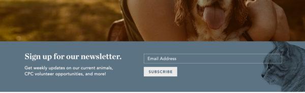 nonprofit newsletter sign-up form