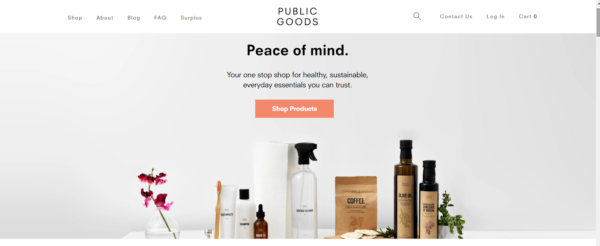 marketing in the beauty industry - Public Goods puts emphasis on its sustainable products