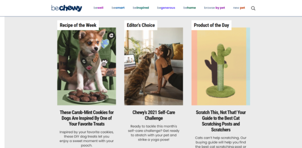 Screenshot of Chewy's blog