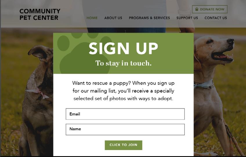 Nonprofit website newsletter signup form