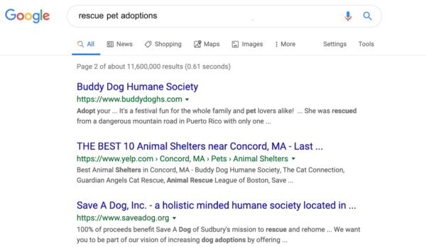 Nonprofit search marketing example